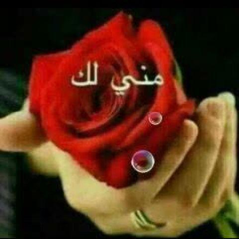 Video Call with أبو أحمد