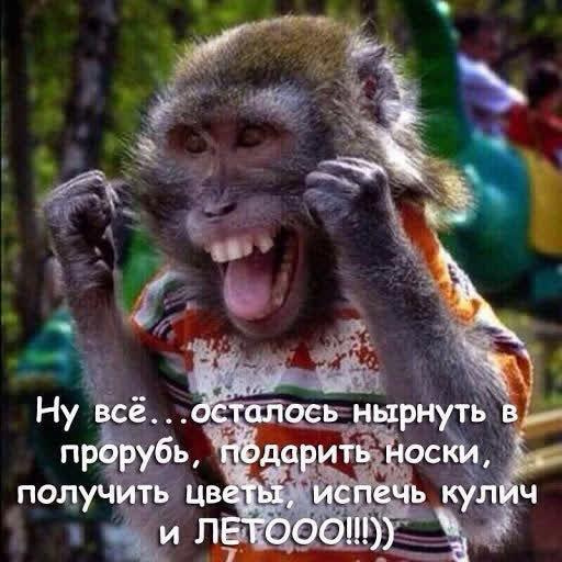 Video Call with Скиминок