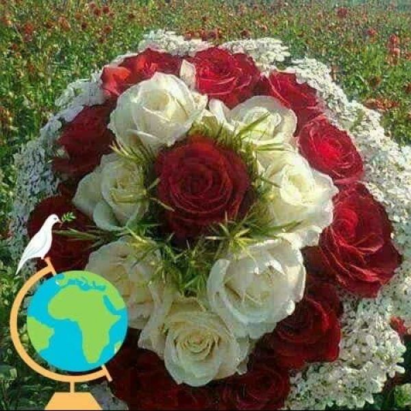 Video Call with ابوجاسم