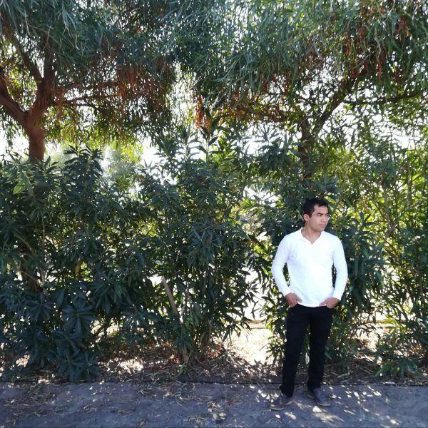 Mehmet Şahin ile Görüntülü Görüş
