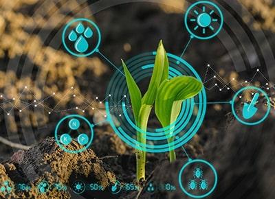Tarım - Bitki Yetiştiriciliği